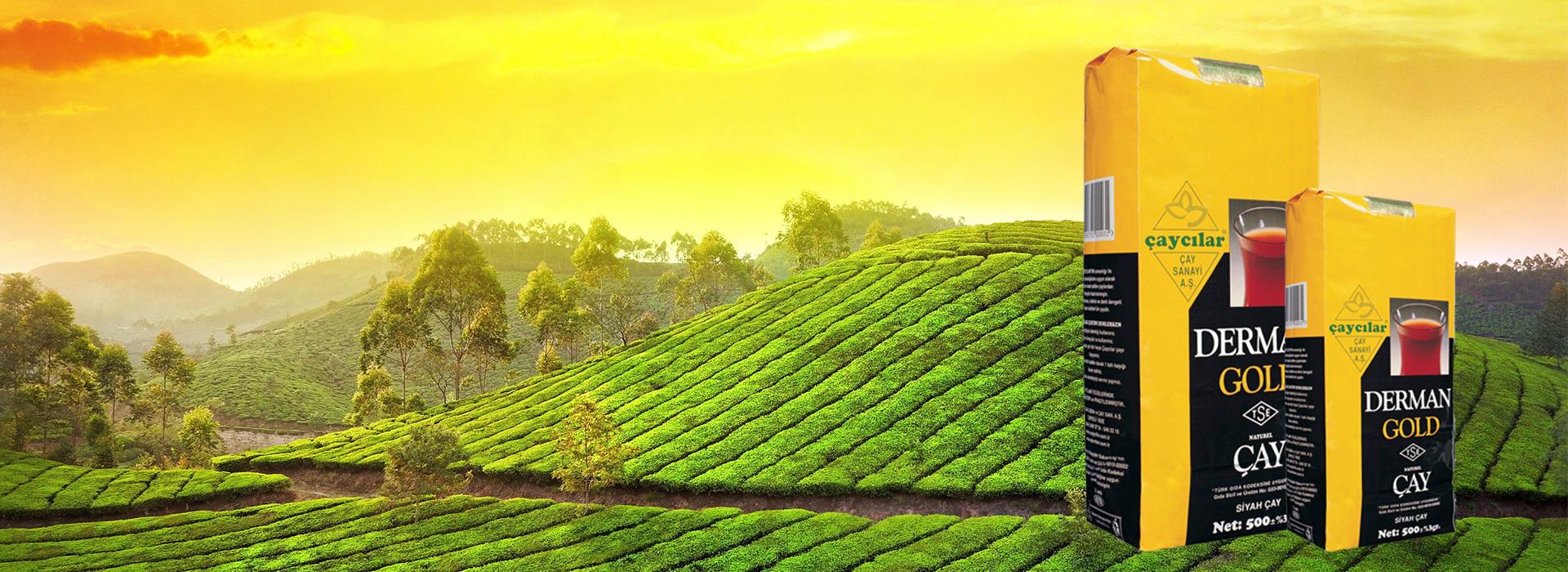 35 yıldır en taze çayı üretiyoruz.